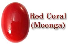Red Coral Gemstone Moonga Gemstone for Planet Mars
